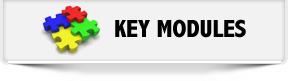 HRMS Key Modules